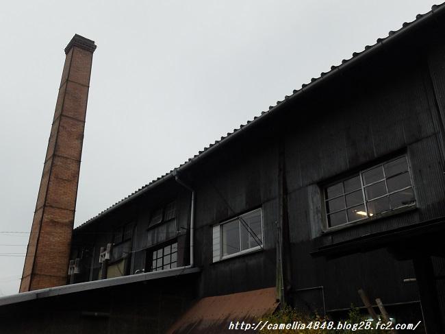 1103shigaraki-3.jpg