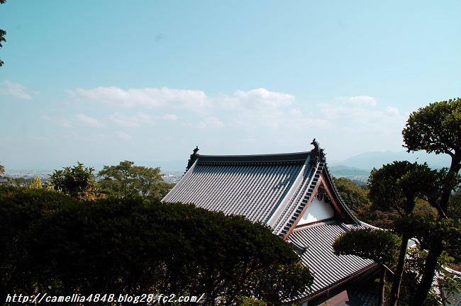 kuhonji-3.jpg