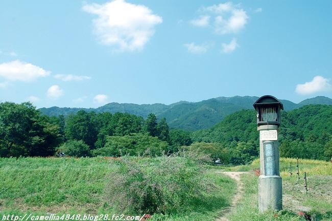 kuhonji-5.jpg