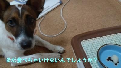 201310210051505ed.jpg