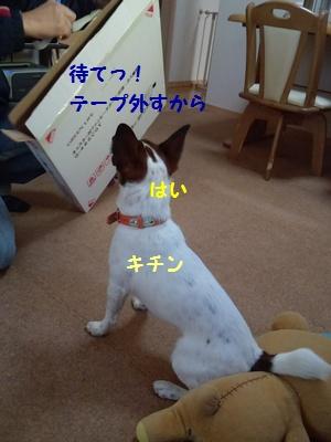 201311220113472d4.jpg