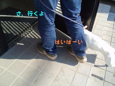 201311七種①