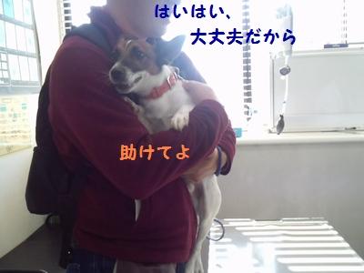 20131125004654b03.jpg