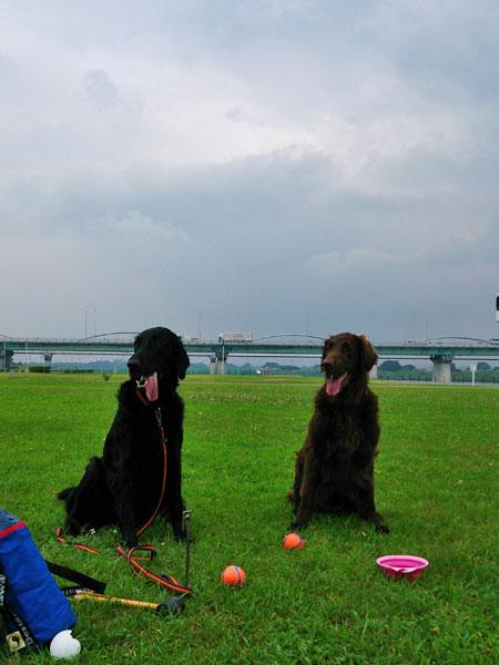 20130724河川敷