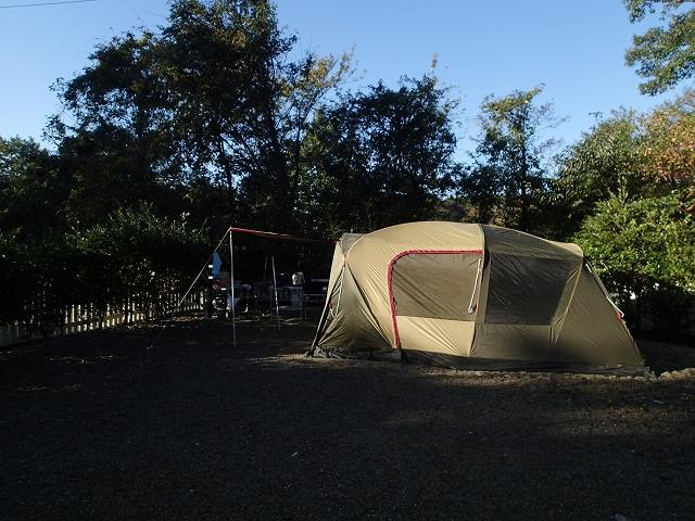 ドッグキャンプサイト