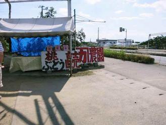 13-7-20 桃円