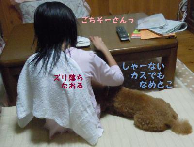DSCN3529_convert_20131009213938.jpg