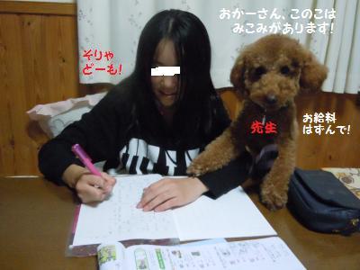 DSCN4083_convert_20131029201253.jpg