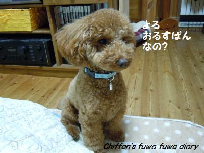 DSCN4352_convert_20131108220208.jpg