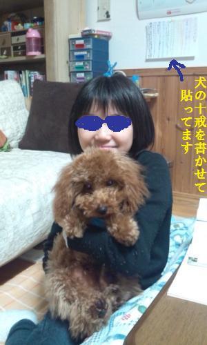 DSC_0334_convert_20130829211934.jpg