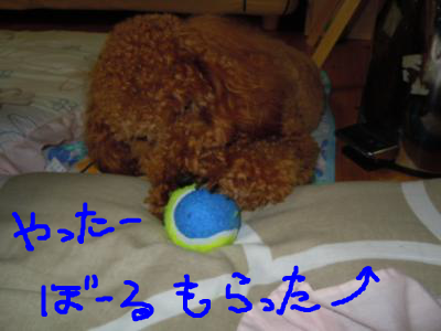 snap_chiffon1496_201381192019.jpg