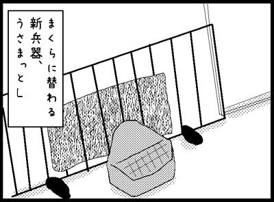 f31.jpg