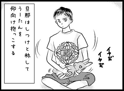 p31.jpg