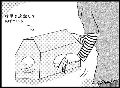 s23.jpg