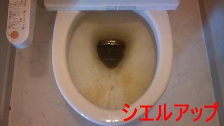 トイレ 尿石 クリーニング前