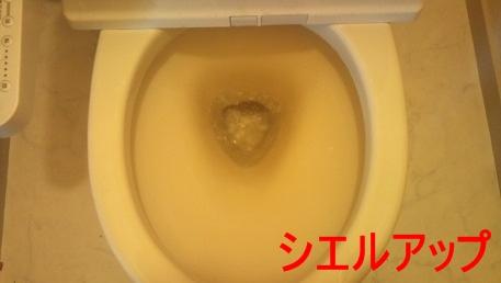 トイレ 尿石 クリーニング後