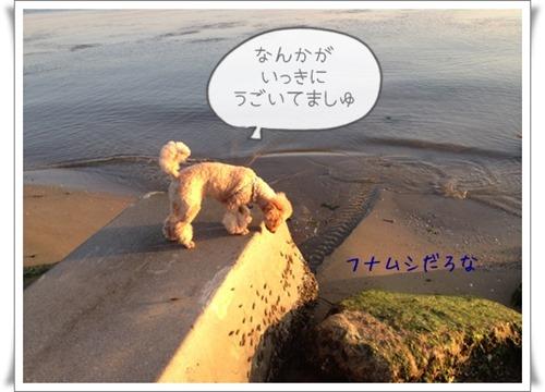 写真 2013-06-13 18 43 00