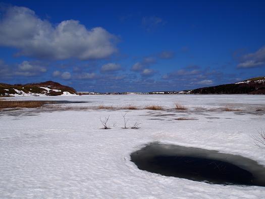 20130410久種湖3