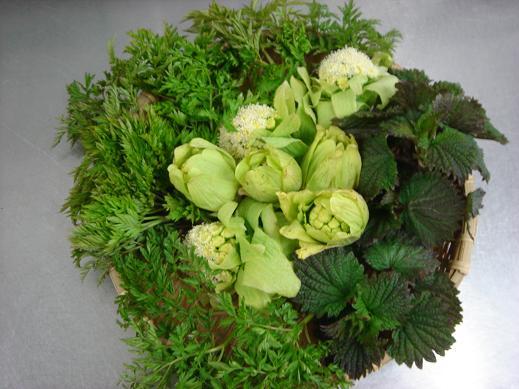20130423山菜