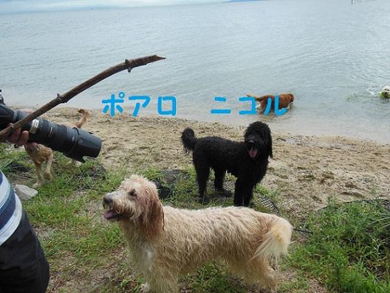 DSCN1171.jpg