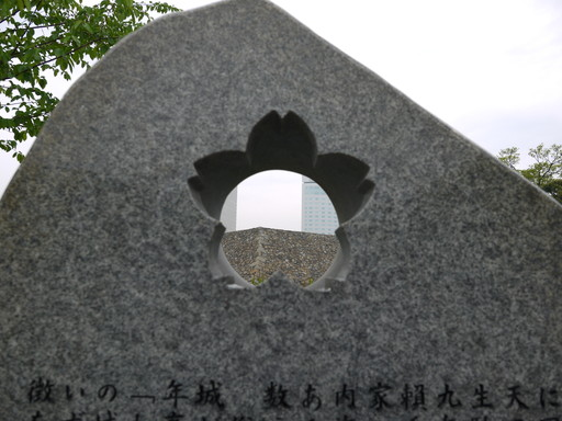 P1030342.jpg