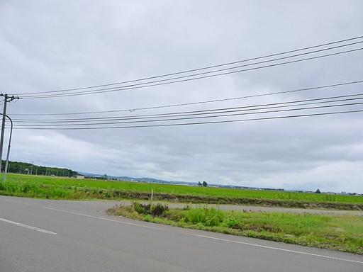 P1050825.jpg