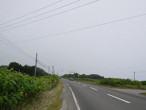 P1060705.jpg