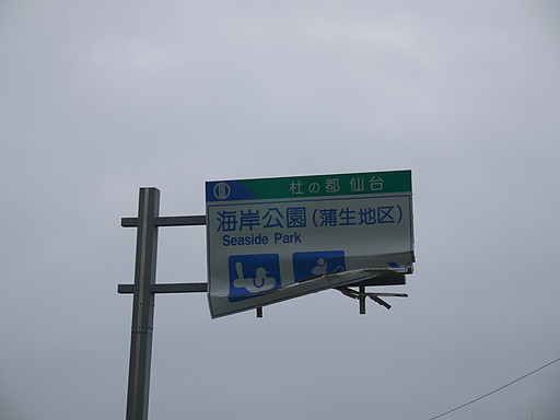 P1080501.jpg