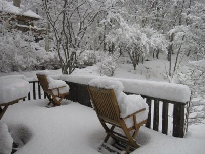 4月の雪2