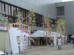 愛知県体育館の七夕飾り