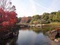 shirotori.jpg