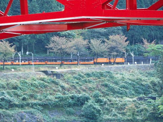 やまびこ橋越しに見るトロッコ列車