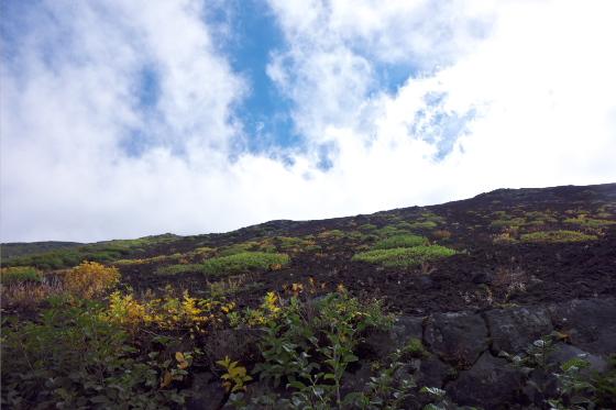 山頂にかかる雲は流れが速い