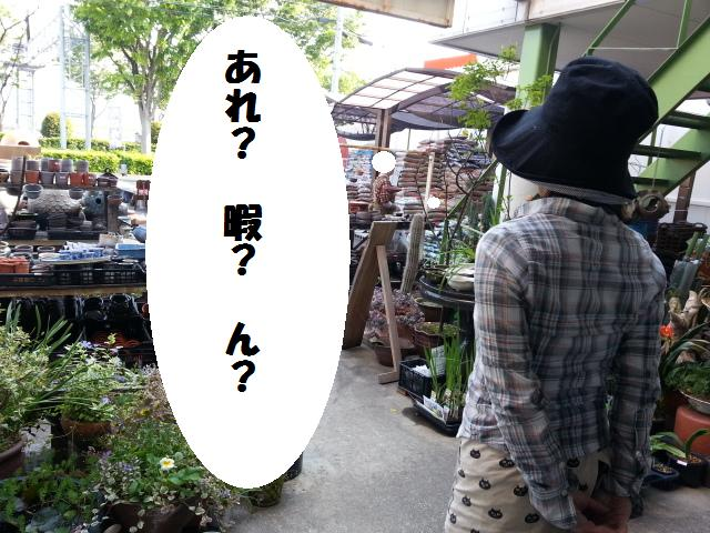 20130506_163524.jpg