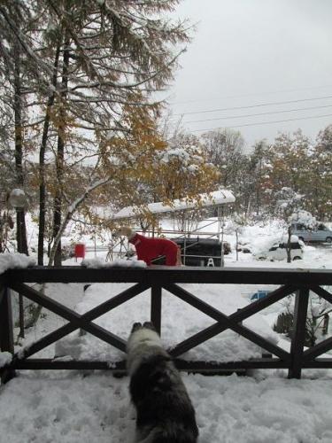 2013初雪12