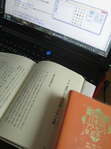 2013夏休み旬10