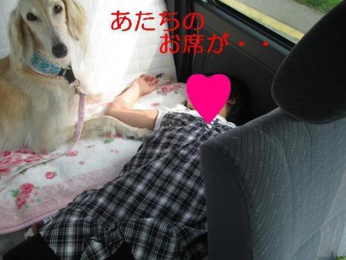 2013夏休み旬21