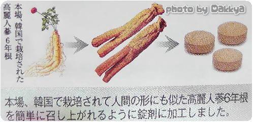 正官庄 紅参タブレット