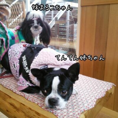 fc2_2013-11-12_09-00-48-061.jpg