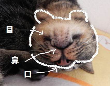 2013032702.png