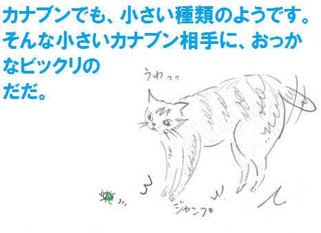 2013050605.png