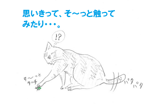 2013050606.png
