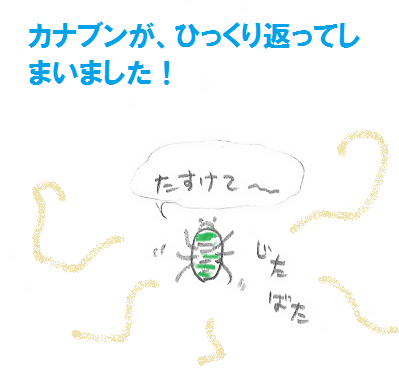 2013050611.png