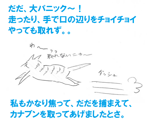 2013050615.png