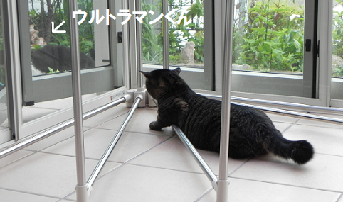 2013052801.png