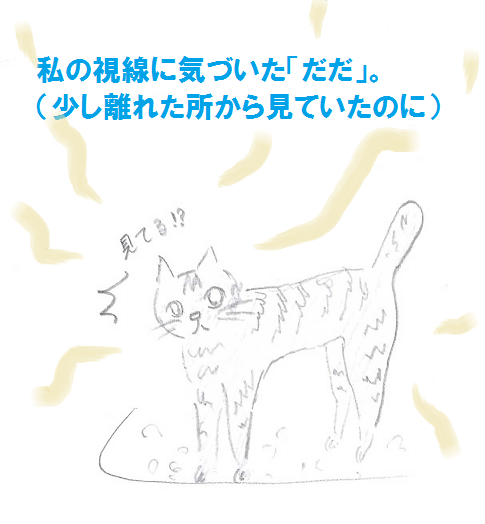 2013052902.png