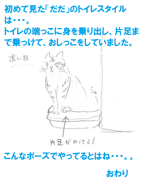 2013052907.png