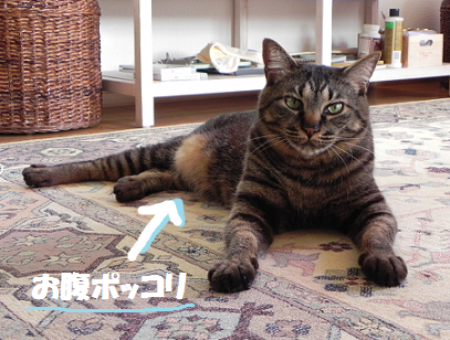 2013061201.png