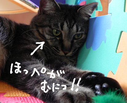 2013061202.png