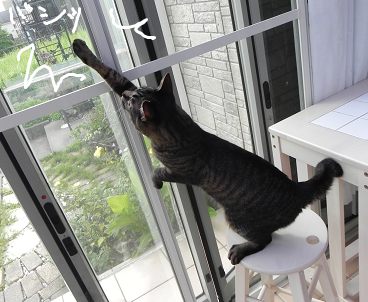2013071004.png